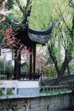 中国茶屋2